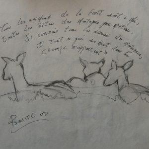 Car, tous les animaux, crayon,©