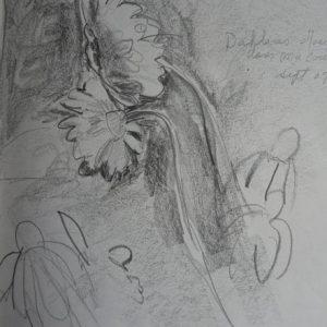 Dahlias, crayon, ©