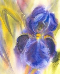 L'iris persistait à garder le silence ©