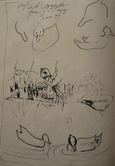 étude canard