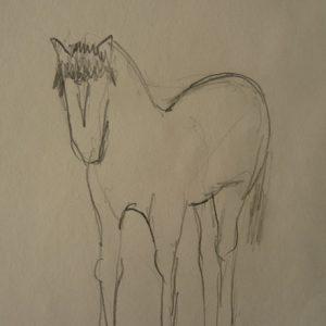 Étude 6, cheval