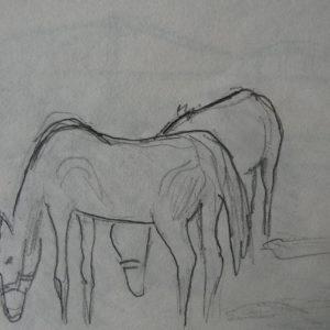 Étude 2, chevaux