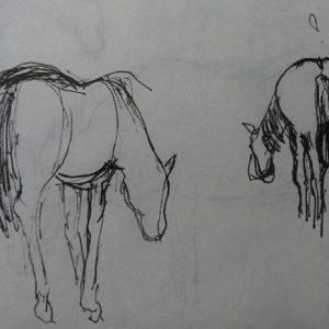 Étude 3, chevaux