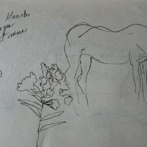 Étude 5, chevaux